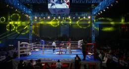 国际顶级拳击赛引爆中国拳坛!2019博盟拳击季将震撼启幕